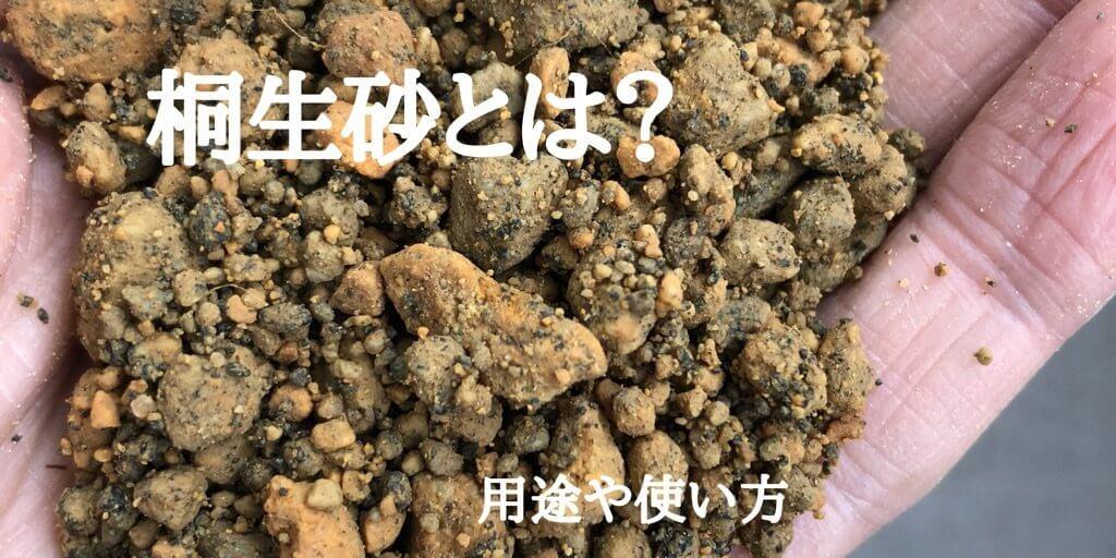 桐生砂とは