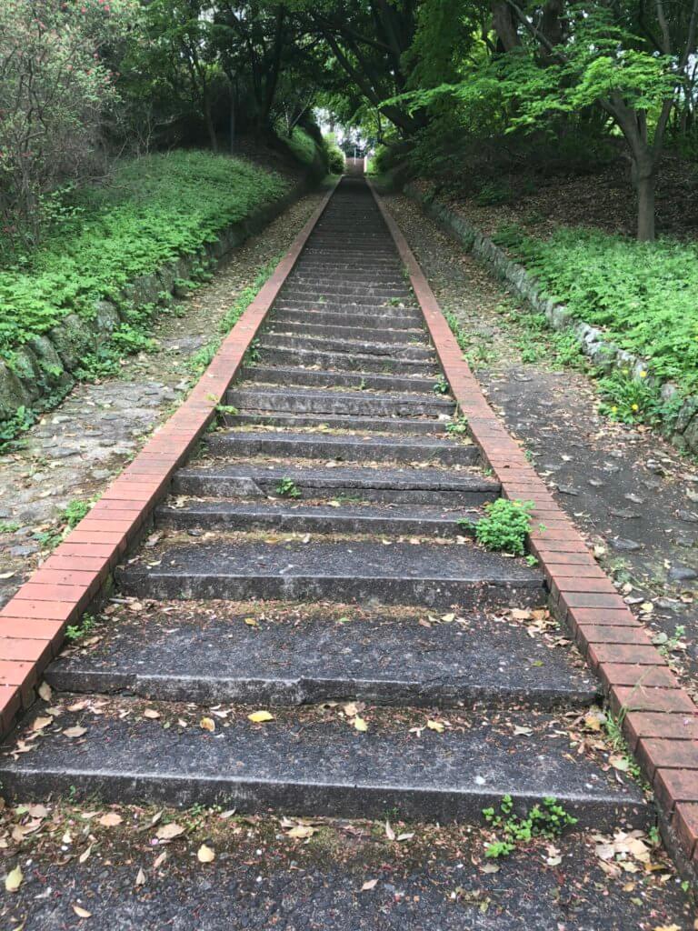 植物園前の坂道