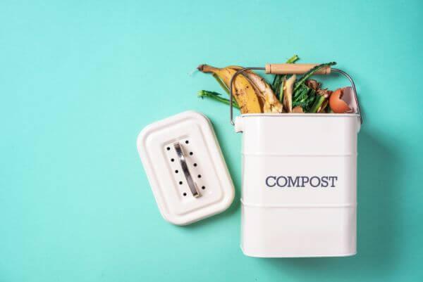 生ゴミを冷凍する悪臭対策が話題!気になる衛生面や冷凍方法を紹介