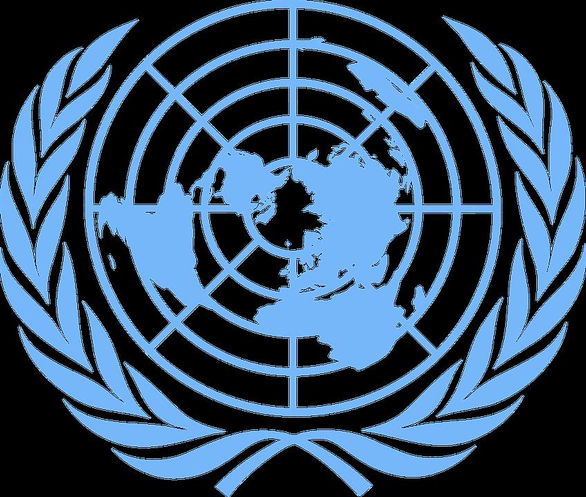 国連のシンボルにオリーブが