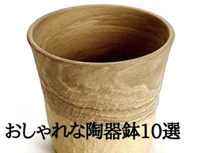 植木鉢特集