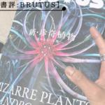 ブルータス珍奇植物