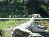 平川動物公園おすすめ