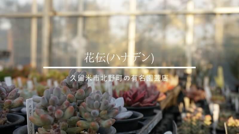 久留米市北野・花伝(ハナデン)