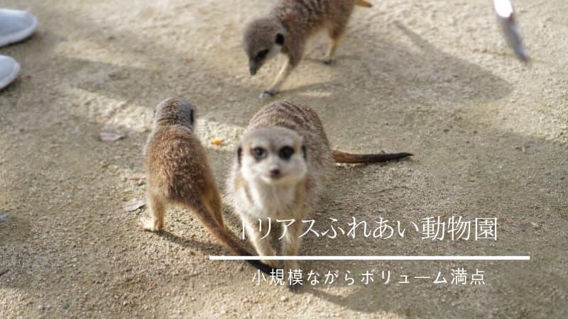 トリアスふれあい動物園