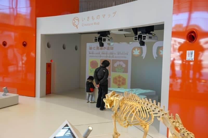 福岡市動物園・体験型アトラクション