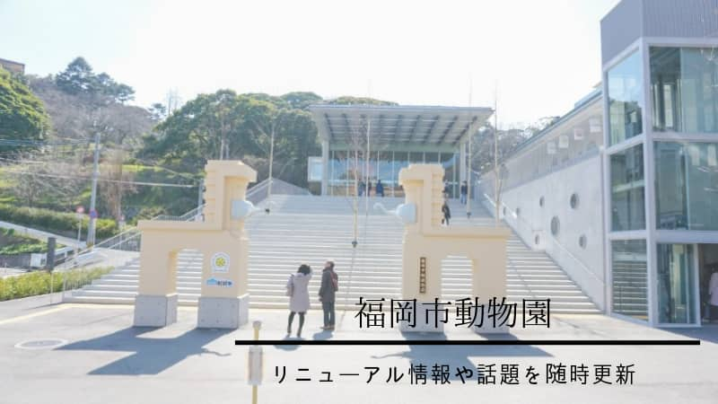 最新|福岡市動物園リニューアル情報・写真付きで紹介【随時更新】