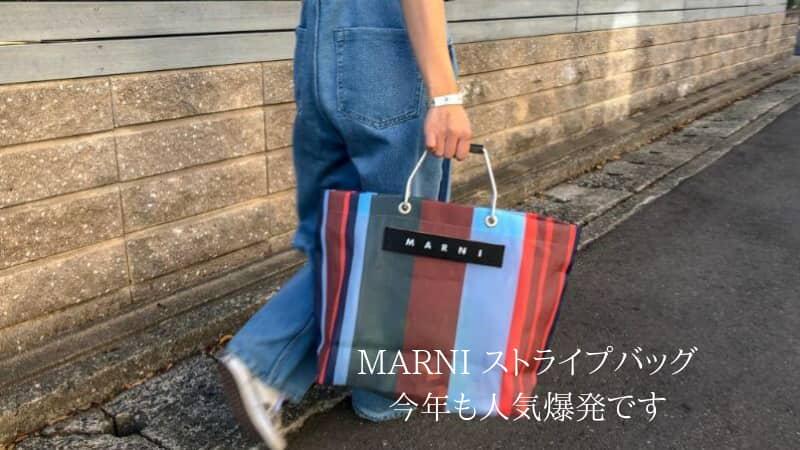 マルニのストライプバッグが大人気で入手困難|念願のバッグを妻にプレゼント
